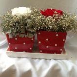 depoimentoandre-arranjos-para-bodas-de-4-anos1405