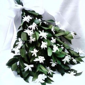 bouquetderuscusenardospreservadoswhitebranco