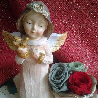 anjos-de-natal-e-rosas-naturais-preservadas-cor-unica