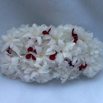 aplique-20-x-10-hortensias-e-nardos-naturais-preservados-cor-unica