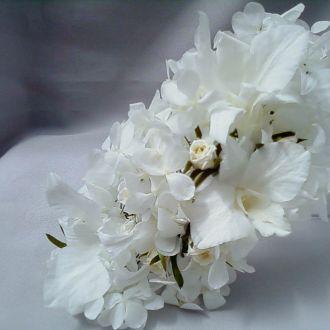 aplique-20-x-8-flores-naturais-preservadas-arranjowhitebranco
