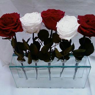 arranjo-de-flores-naturais-preservadas-com-cabored