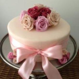 bolo-by-carla-barbatolight-pink