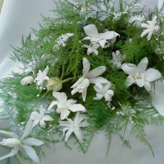 bouquet-de-melindre-orquideas-nardos-e-mini-crisantemos-preservados-buquewhitebranco
