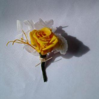 lapela-de-rosa-amarela-preservadagolden-yellow
