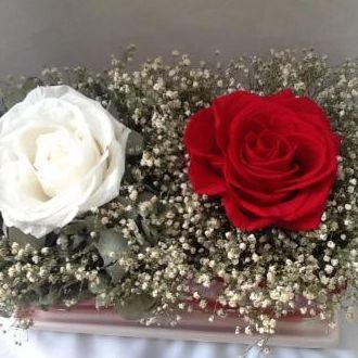 rosa-vermelha-e-rosa-branca-flores-naturais-preservadas-arranjo-cor-unica