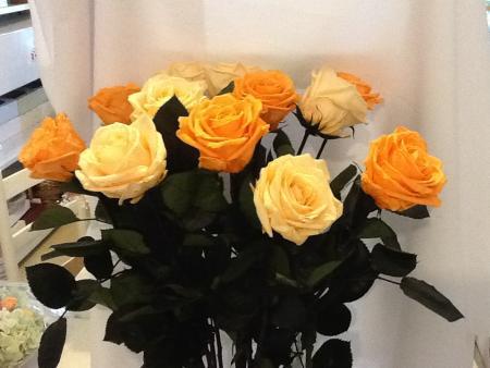 vaso-rosas-amarelas-naturais-preservadasgolden-yellow