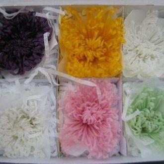 crisantemosnaturaispreservadoscorunica