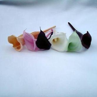 mini-callas-naturais-preservadas-cor-unica