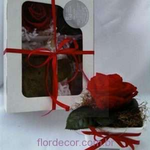 flor+de+cor+faca+v+mesma++kit+presente+1+faca+v+mesma++kit+presente+rosa+vermelha+1