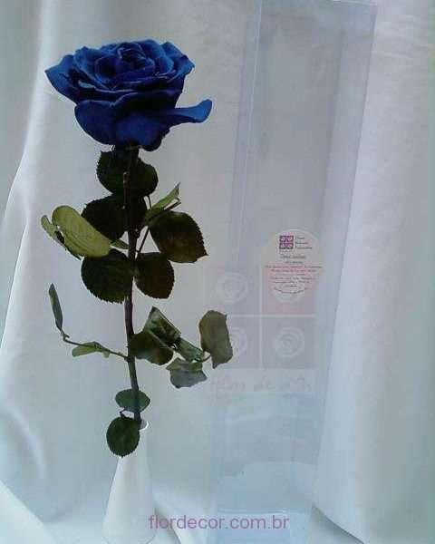 flor+de+cor+rosa-azul-noite-premium-natural-preservada-com-cabo+