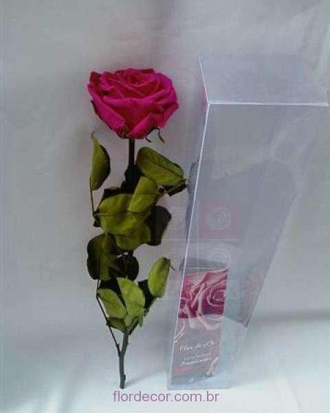 flor+de+cor+rosa+pink+premium+preservada+com+cabo+