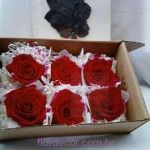 flor+de+cor+rosas+premium+vermelhas+e+folhas+preservadas++