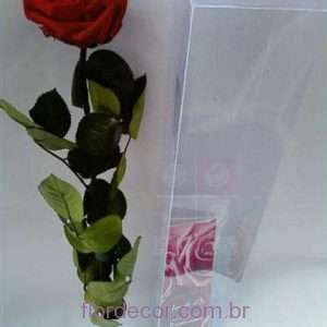 flor+de+cor+rosa+vermelha+premium+preservada+com+cabo+