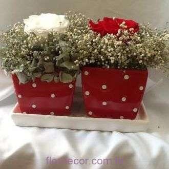 arranjo-em-vasos-vermelhos-de-bolinhas-brancas-com-rosas-naturais-preservadas+-cor-unica