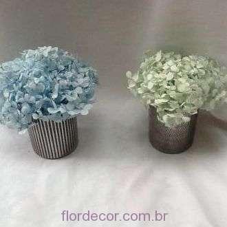 arranjo-hortensias-azul-e-verde-naturais-preservadas+-cor-unica