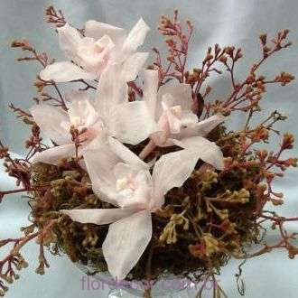 arranjo-pequeno-de-flores-naturais-preservadas+-cor-unica
