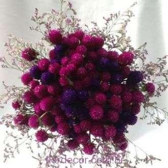 bouquet-de-perpetuas-e-limonium-frescos+-cor-unica