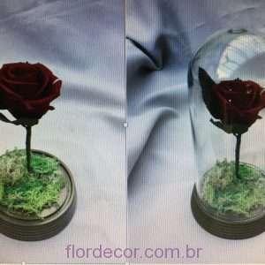 Bela e a Fera rosa média NATURAL preservada em redoma de acrílico